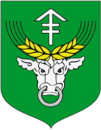 Gmina Rudniki 1